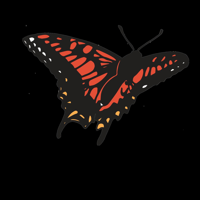 Butterfly Music Transgender Chorus | Music For The Soul Series